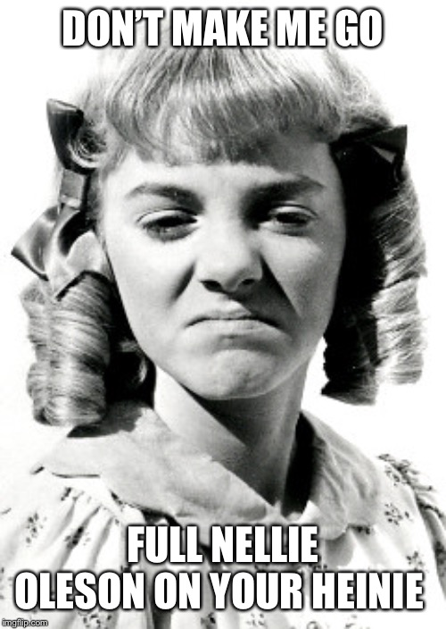 nelly facebook hater | DON'T MAKE ME GO FULL NELLIE OLESON ON YOUR HEINIE | image tagged in nelly facebook hater | made w/ Imgflip meme maker