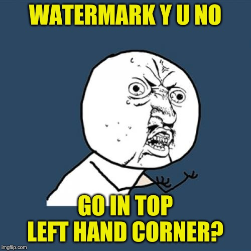 Y U No Meme | WATERMARK Y U NO GO IN TOP LEFT HAND CORNER? | image tagged in memes,y u no | made w/ Imgflip meme maker