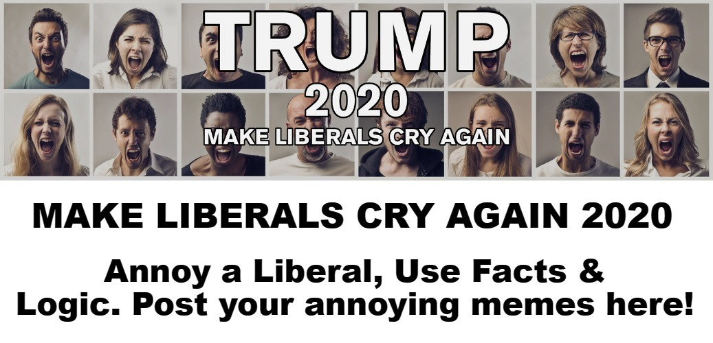 Make Liberals Cry Again 2020 | image tagged in funny memes,annoy a liberal,crying democrats,crying snowflakes,crying liberals,triggered liberal | made w/ Imgflip meme maker