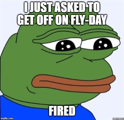 sad frog | I JUST ASKED TO GET OFF ON FLY-DAY FIRED | image tagged in sad frog | made w/ Imgflip meme maker