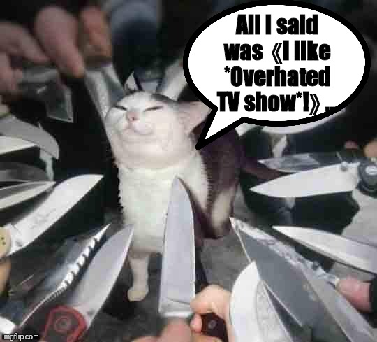Liking an overhated TV show be like... | All I said was 《I like *Overhated TV show*!》... | image tagged in cat | made w/ Imgflip meme maker