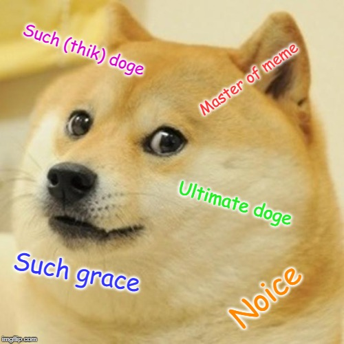 Doge Meme | Such (thik) doge Master of meme Ultimate doge Such grace Noice | image tagged in memes,doge | made w/ Imgflip meme maker