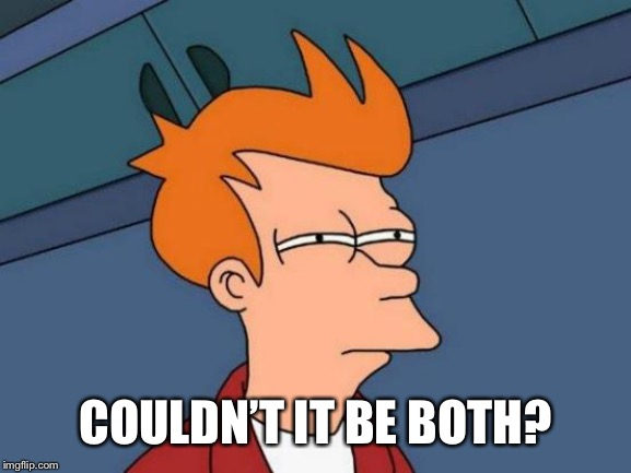Futurama Fry Meme | COULDN'T IT BE BOTH? | image tagged in memes,futurama fry | made w/ Imgflip meme maker