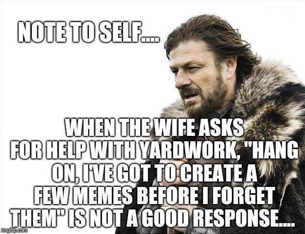 "Yeah, yeah, yeah.... | NOTE TO SELF.... WHEN THE WIFE ASKS FOR HELP WITH YARDWORK, ""HANG ON, I'VE GOT TO CREATE A FEW MEMES BEFORE I FORGET THEM"" IS NOT A GOOD RES 