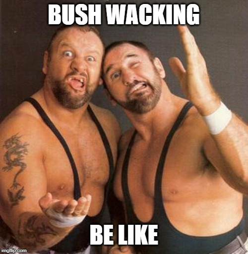 BUSH WACKING BE LIKE | made w/ Imgflip meme maker