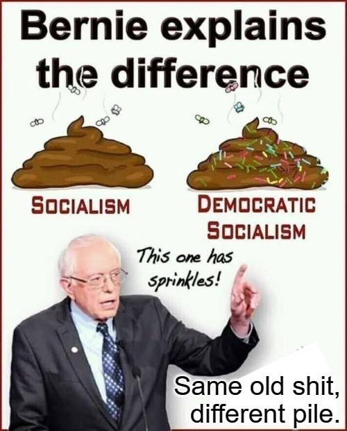 Bernie Explains The Difference Between Socialism & Democratic Socialism | image tagged in bernie sanders,feel the bern,communist socialist,socialism,democratic socialism,communism socialism | made w/ Imgflip meme maker