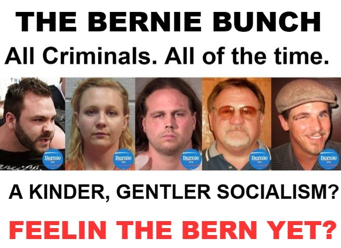 The Bernie Bunch | image tagged in feel the bern,bernie sanders,communist socialist,communism socialism,democratic socialism,triggered liberal | made w/ Imgflip meme maker