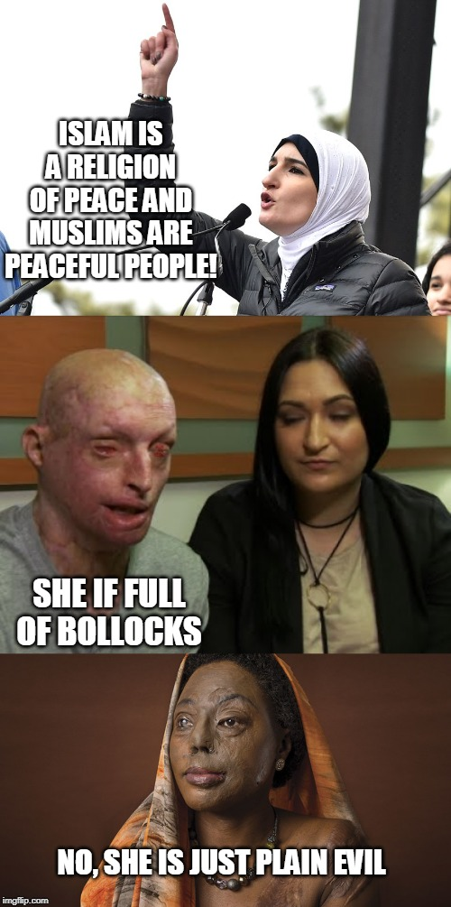 ISLAM IS A RELIGION OF PEACE AND MUSLIMS ARE PEACEFUL PEOPLE! NO, SHE IS JUST PLAIN EVIL SHE IF FULL OF BOLLOCKS | image tagged in linda sarsour | made w/ Imgflip meme maker