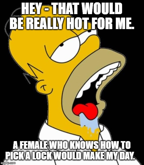 HEY - THAT WOULD BE REALLY HOT FOR ME. A FEMALE WHO KNOWS HOW TO PICK A LOCK WOULD MAKE MY DAY. | image tagged in drooling homer | made w/ Imgflip meme maker
