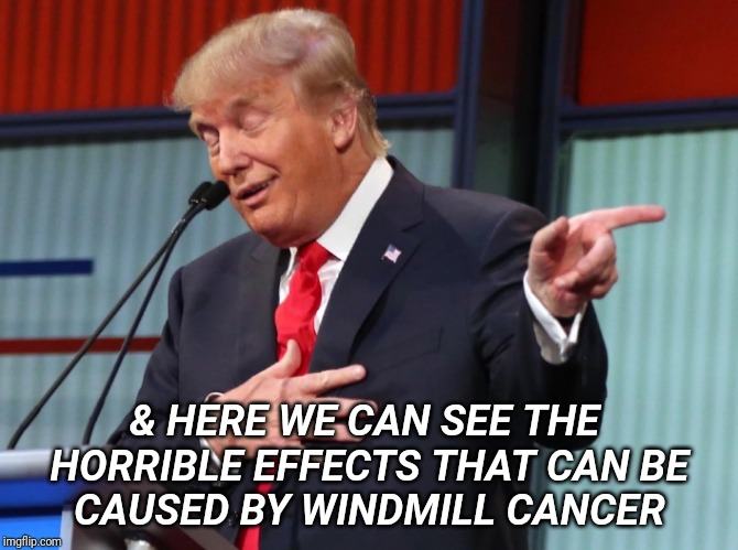 Trump Pointing Away |  & HERE WE CAN SEE THE  HORRIBLE EFFECTS THAT CAN BE CAUSED BY WINDMILL CANCER | image tagged in trump pointing away | made w/ Imgflip meme maker