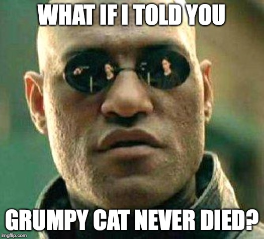 What if i told you | WHAT IF I TOLD YOU GRUMPY CAT NEVER DIED? | image tagged in what if i told you | made w/ Imgflip meme maker