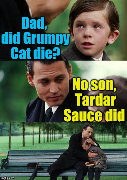 Finding Neverland Meme | Dad,  did Grumpy Cat die? No son,  Tardar Sauce did | image tagged in memes,finding neverland | made w/ Imgflip meme maker