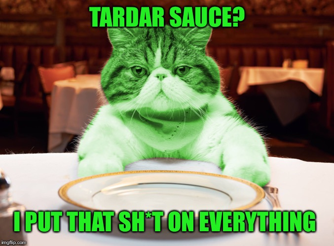 RayCat Hungry | TARDAR SAUCE? I PUT THAT SH*T ON EVERYTHING | image tagged in raycat hungry | made w/ Imgflip meme maker