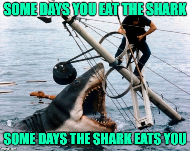 The Jaws of Life | SOME DAYS YOU EAT THE SHARK SOME DAYS THE SHARK EATS YOU | image tagged in jaws,mashup,big lebowski,funny memes,words of wisdom,life lessons | made w/ Imgflip meme maker