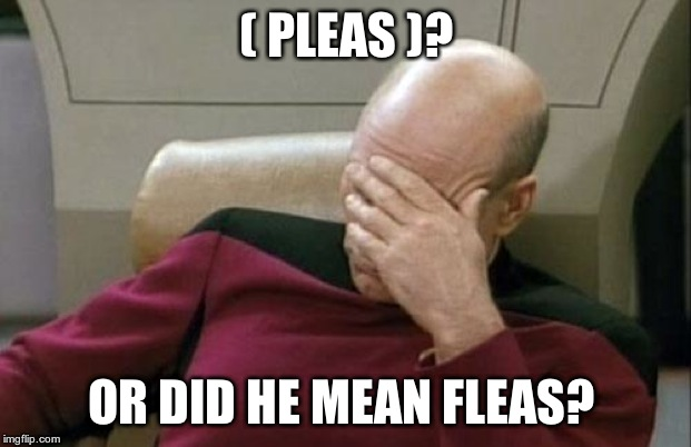 Captain Picard Facepalm Meme | ( PLEAS )? OR DID HE MEAN FLEAS? | image tagged in memes,captain picard facepalm | made w/ Imgflip meme maker