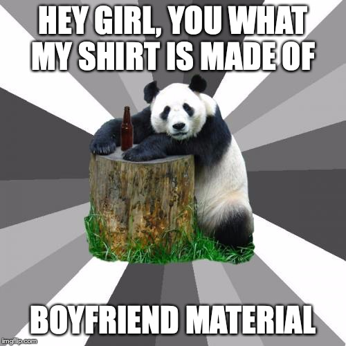 Pickup Line Panda |  HEY GIRL, YOU WHAT MY SHIRT IS MADE OF; BOYFRIEND MATERIAL | image tagged in memes,pickup line panda | made w/ Imgflip meme maker