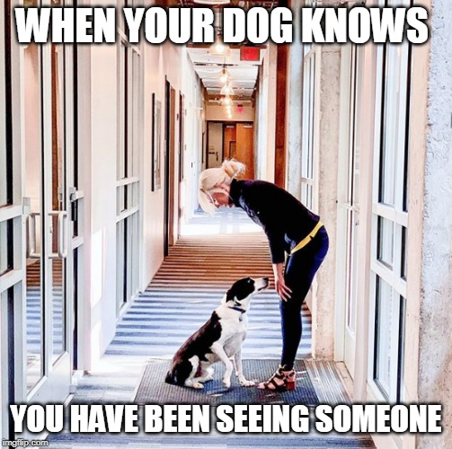 DOGS KNOW | WHEN YOUR DOG KNOWS YOU HAVE BEEN SEEING SOMEONE | image tagged in doge,dogs,funny dogs | made w/ Imgflip meme maker