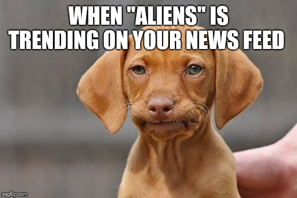 "Dissapointed puppy | WHEN ""ALIENS"" IS TRENDING ON YOUR NEWS FEED 