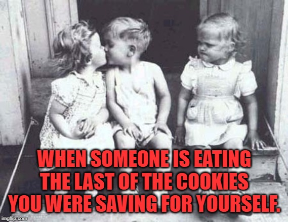 Especially when they already ate over half the pack on their own! You need a better hiding place! | WHEN SOMEONE IS EATING THE LAST OF THE COOKIES YOU WERE SAVING FOR YOURSELF. | image tagged in nixieknox,memes,hand in the cookie jar | made w/ Imgflip meme maker