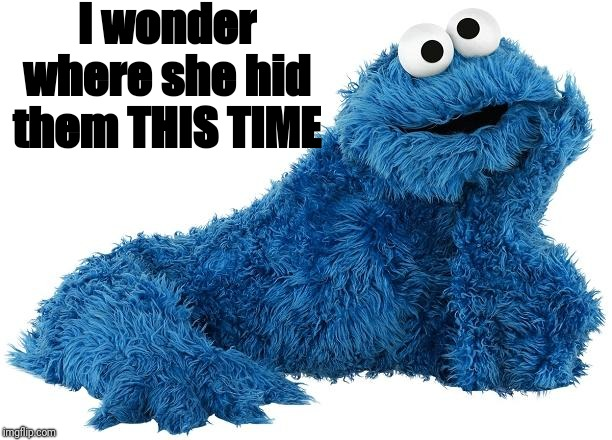 Cookie Monster | I wonder where she hid them THIS TIME | image tagged in cookie monster | made w/ Imgflip meme maker