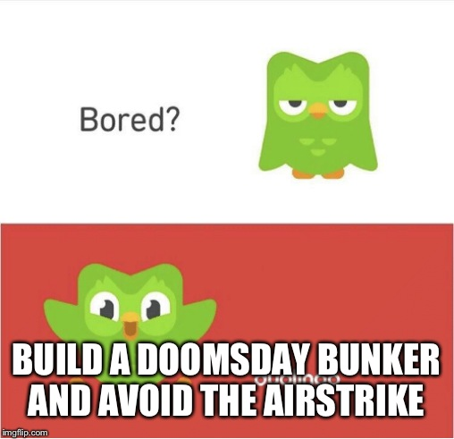 DUOLINGO BORED | BUILD A DOOMSDAY BUNKER AND AVOID THE AIRSTRIKE | image tagged in duolingo bored | made w/ Imgflip meme maker