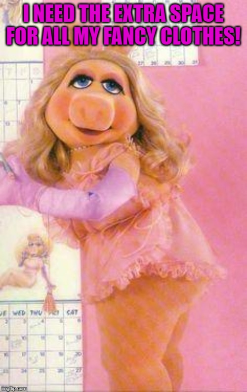Miss Piggy | I NEED THE EXTRA SPACE FOR ALL MY FANCY CLOTHES! | image tagged in miss piggy | made w/ Imgflip meme maker