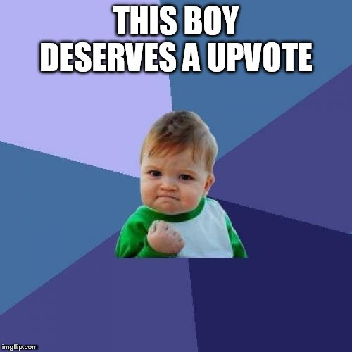 Success Kid Meme | THIS BOY DESERVES A UPVOTE | image tagged in memes,success kid | made w/ Imgflip meme maker