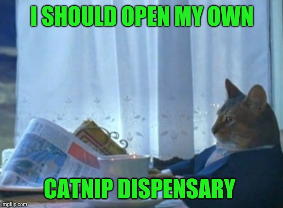 I Should Buy A Boat Cat | I SHOULD OPEN MY OWN CATNIP DISPENSARY | image tagged in memes,i should buy a boat cat | made w/ Imgflip meme maker