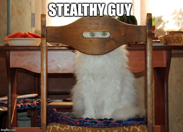 Stealth | STEALTHY GUY | image tagged in stealth | made w/ Imgflip meme maker