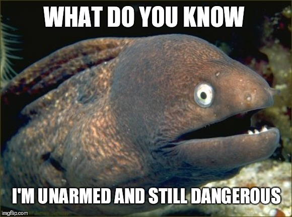 WHAT DO YOU KNOW I'M UNARMED AND STILL DANGEROUS | image tagged in memes,bad joke eel | made w/ Imgflip meme maker