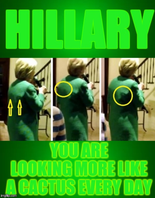 HILLARY YOU ARE LOOKING MORE LIKE A CACTUS EVERY DAY | image tagged in hillary clinton,hillary,the great awakening,qanon | made w/ Imgflip meme maker
