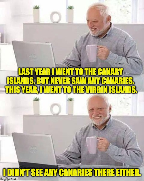 Hide the Pain Harold Meme | LAST YEAR I WENT TO THE CANARY ISLANDS, BUT NEVER SAW ANY CANARIES.  THIS YEAR, I WENT TO THE VIRGIN ISLANDS. I DIDN'T SEE ANY CANARIES THER | image tagged in memes,hide the pain harold | made w/ Imgflip meme maker