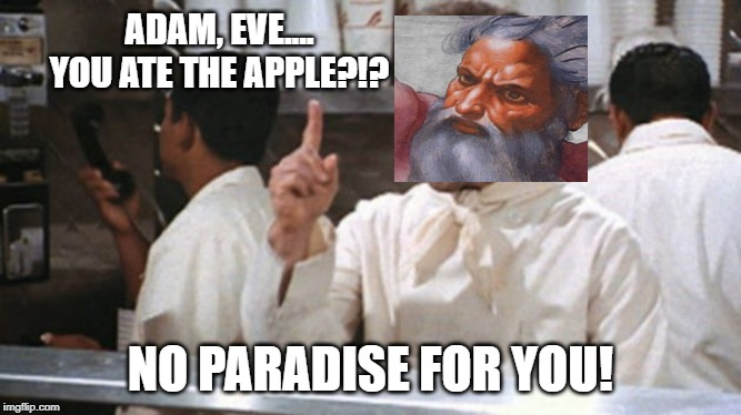 Eden Nazi | ADAM, EVE.... YOU ATE THE APPLE?!? NO PARADISE FOR YOU! | image tagged in god | made w/ Imgflip meme maker
