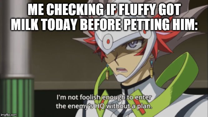ME CHECKING IF FLUFFY GOT MILK TODAY BEFORE PETTING HIM: | made w/ Imgflip meme maker
