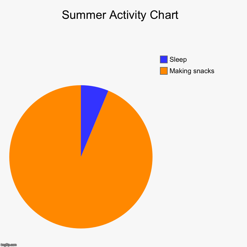 summer activity chart | making snacks , sleep | image tagged in charts,pie  charts