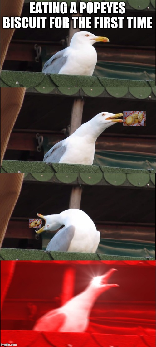 Inhaling Seagull | EATING A POPEYES BISCUIT FOR THE FIRST TIME | image tagged in memes,inhaling seagull | made w/ Imgflip meme maker