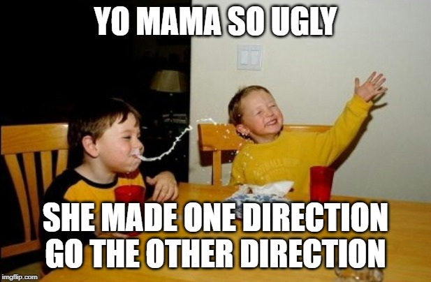And split up too. |  YO MAMA SO UGLY; SHE MADE ONE DIRECTION GO THE OTHER DIRECTION | image tagged in memes,yo mamas so fat,funny | made w/ Imgflip meme maker