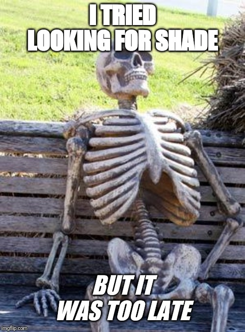 Toooooo late | I TRIED LOOKING FOR SHADE BUT IT WAS TOO LATE | image tagged in memes,waiting skeleton,haha,funny,too late | made w/ Imgflip meme maker