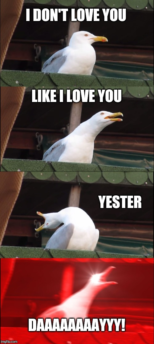 Inhaling Seagull | I DON'T LOVE YOU LIKE I LOVE YOU YESTER DAAAAAAAAYYY! | image tagged in memes,inhaling seagull | made w/ Imgflip meme maker