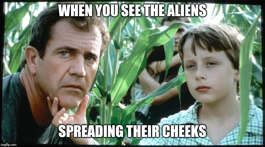 Signs | WHEN YOU SEE THE ALIENS SPREADING THEIR CHEEKS | image tagged in signs | made w/ Imgflip meme maker