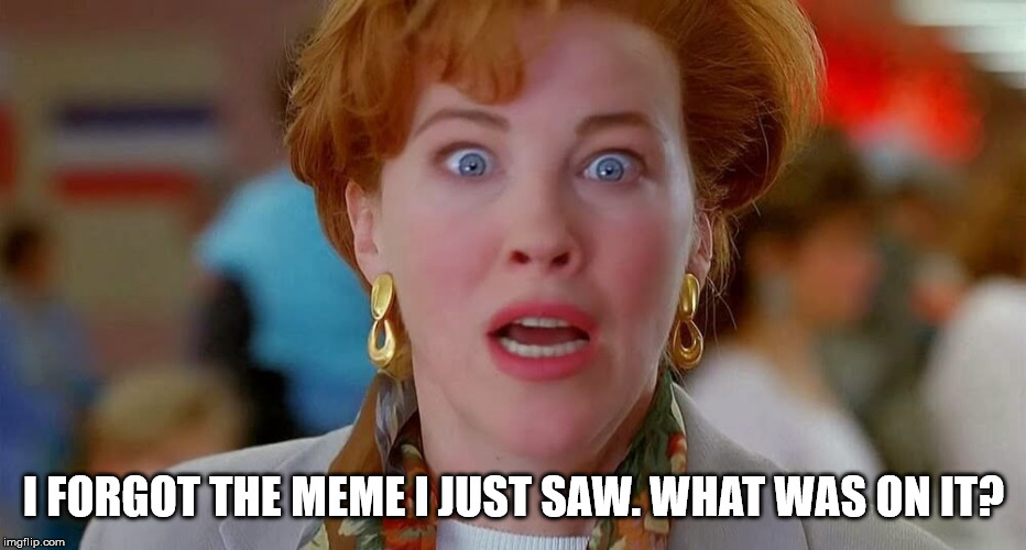 Home Alone We Forgot Kevin | I FORGOT THE MEME I JUST SAW. WHAT WAS ON IT? | image tagged in home alone we forgot kevin | made w/ Imgflip meme maker