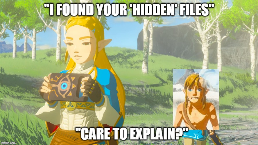 "LINK GOT CAUGHT | ""I FOUND YOUR 'HIDDEN' FILES"" ""CARE TO EXPLAIN?"" 