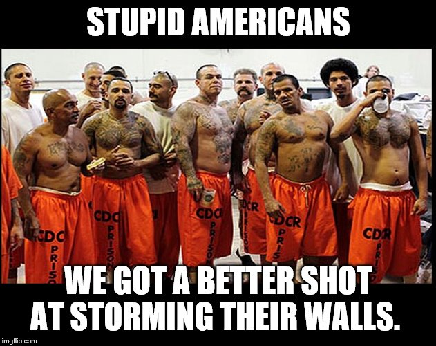 Illegal Aliens for Real | STUPID AMERICANS WE GOT A BETTER SHOT AT STORMING THEIR WALLS. | image tagged in illegal aliens for real | made w/ Imgflip meme maker