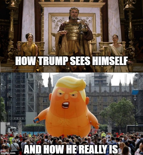 #Jokepotus | HOW TRUMP SEES HIMSELF AND HOW HE REALLY IS | image tagged in trump balloon,memes,politics,impeach trump,maga | made w/ Imgflip meme maker