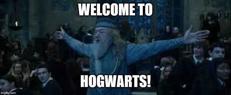Harry Potter | WELCOME TO HOGWARTS! | image tagged in harry potter | made w/ Imgflip meme maker
