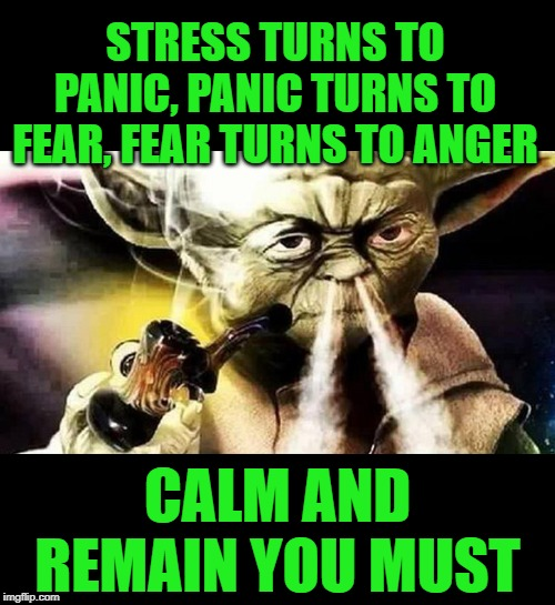 Mind Tricks | STRESS TURNS TO PANIC, PANIC TURNS TO FEAR, FEAR TURNS TO ANGER CALM AND REMAIN YOU MUST | image tagged in panic,fear,anger,keep calm,advice yoda,jedi mind trick | made w/ Imgflip meme maker