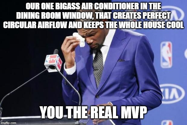 You The Real MVP 2 |  OUR ONE BIGASS AIR CONDITIONER IN THE DINING ROOM WINDOW, THAT CREATES PERFECT CIRCULAR AIRFLOW AND KEEPS THE WHOLE HOUSE COOL; YOU THE REAL MVP | image tagged in memes,you the real mvp 2 | made w/ Imgflip meme maker