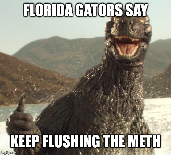 Godzilla approved | FLORIDA GATORS SAY KEEP FLUSHING THE METH | image tagged in godzilla approved | made w/ Imgflip meme maker