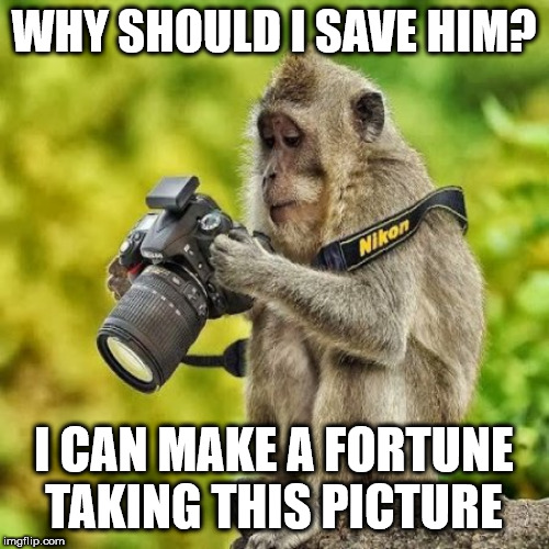 WHY SHOULD I SAVE HIM? I CAN MAKE A FORTUNE TAKING THIS PICTURE | image tagged in mono fotografo | made w/ Imgflip meme maker