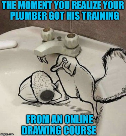 Plumber is Nuts |  THE MOMENT YOU REALIZE YOUR    PLUMBER GOT HIS TRAINING; FROM AN ONLINE DRAWING COURSE | image tagged in scrat ice age,memes,plumber,nuts,roll safe think about it,the moment you realize | made w/ Imgflip meme maker
